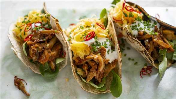 Wegańskie tacos z szarpanymi boczniakami i surówką