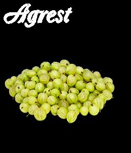 Agrest
