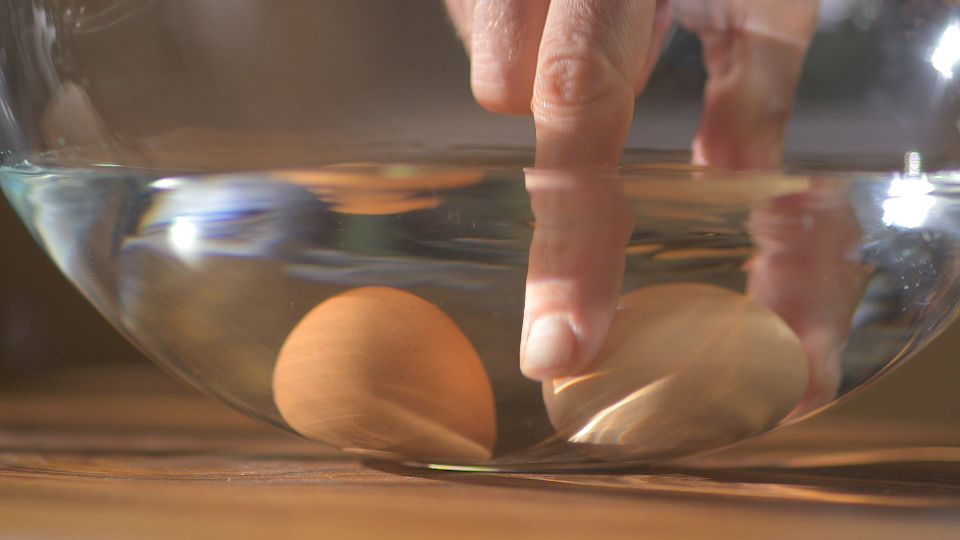 Jak ocenić świeżość jajka?