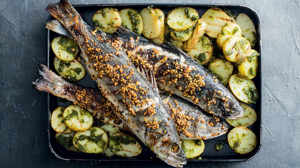 Okoń morski z grilla z masłem musztardowym, ziemniakami z grilla i z pesto bazyliowym